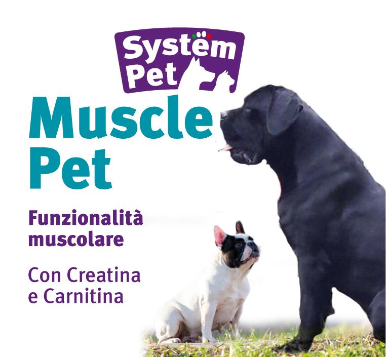 Muscle Pet